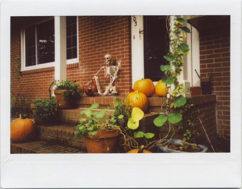 Oct17_instax_roidweekday1_1