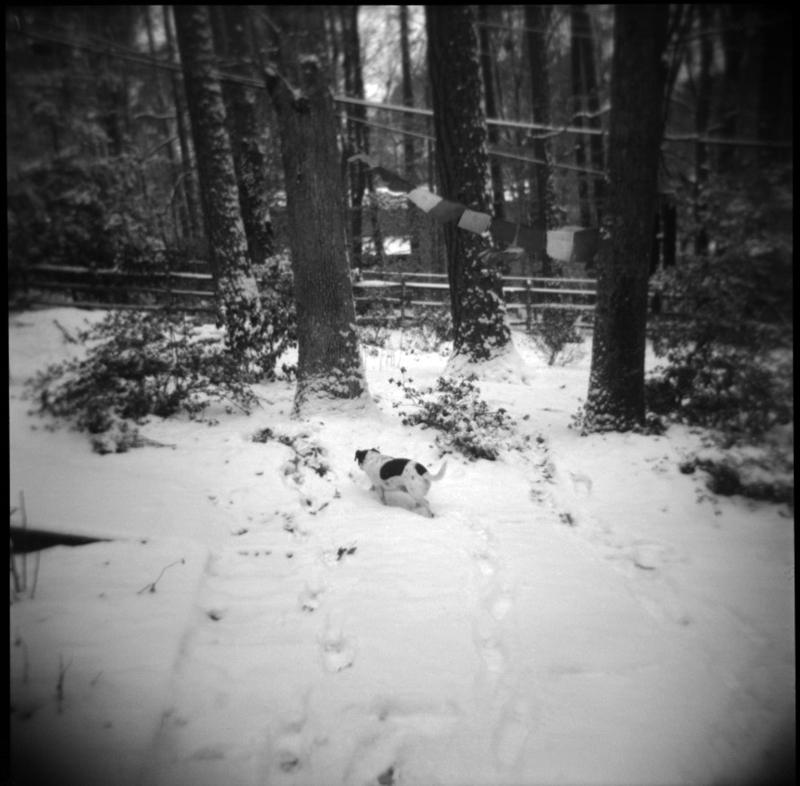 Jan18_holg_snow1