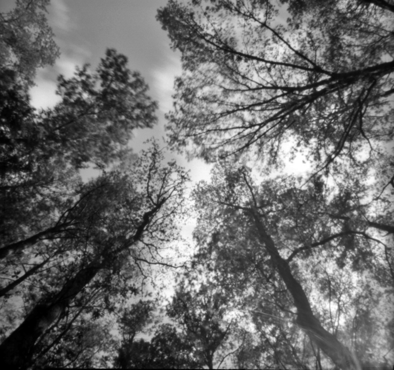 Apr18_zero_pinholeday9