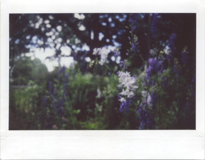 May18_instax_23_3
