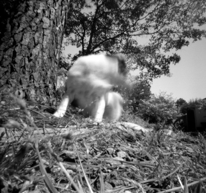 Apr18_zero_pinholeday2