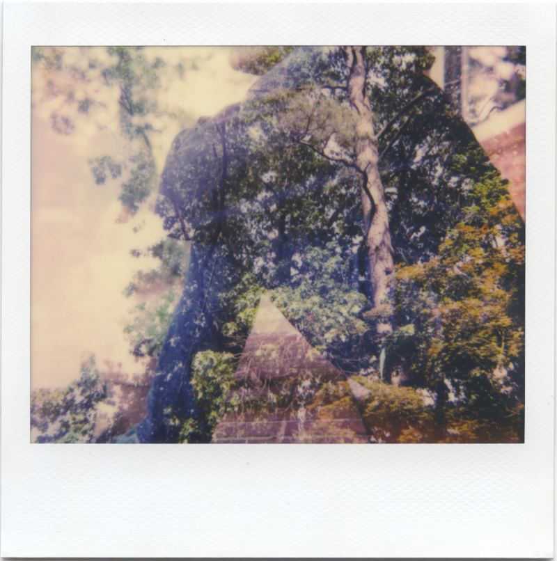 May18_spectra_treesnme