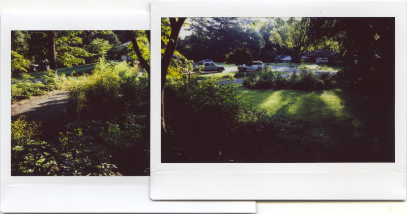 Aug18_instax_garden1