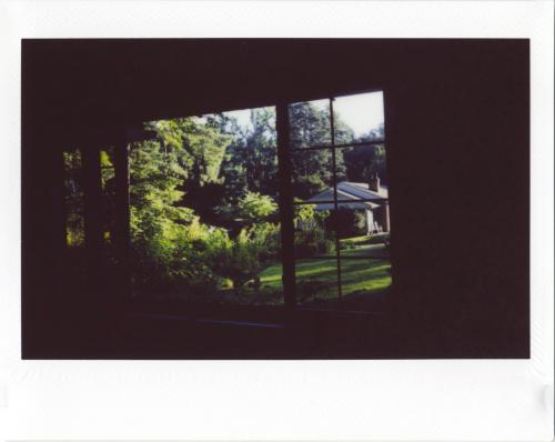 August18_instax_garden2