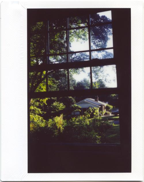 August18_instax_garden3