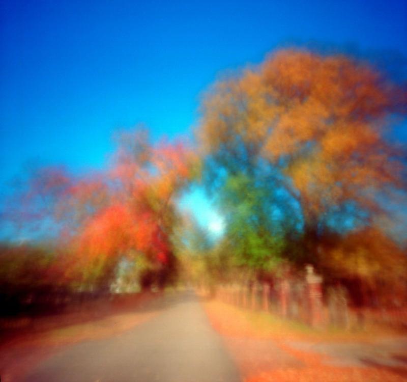 Nov18_zeroc_alex1