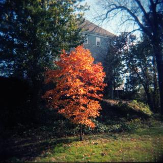 Nov18_holgc_alex002