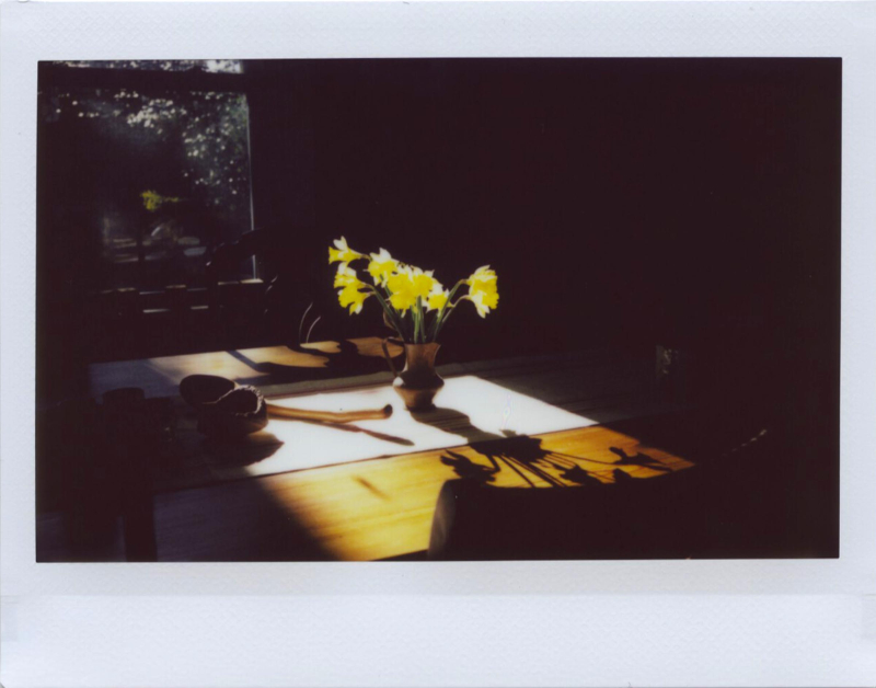 Feb19_instax_daffs