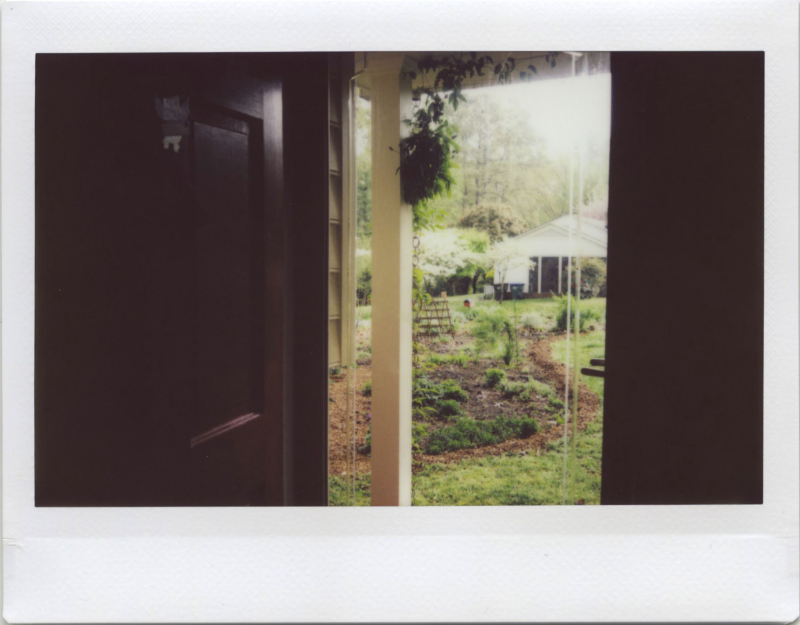 Apr19_instax_sundmorn2