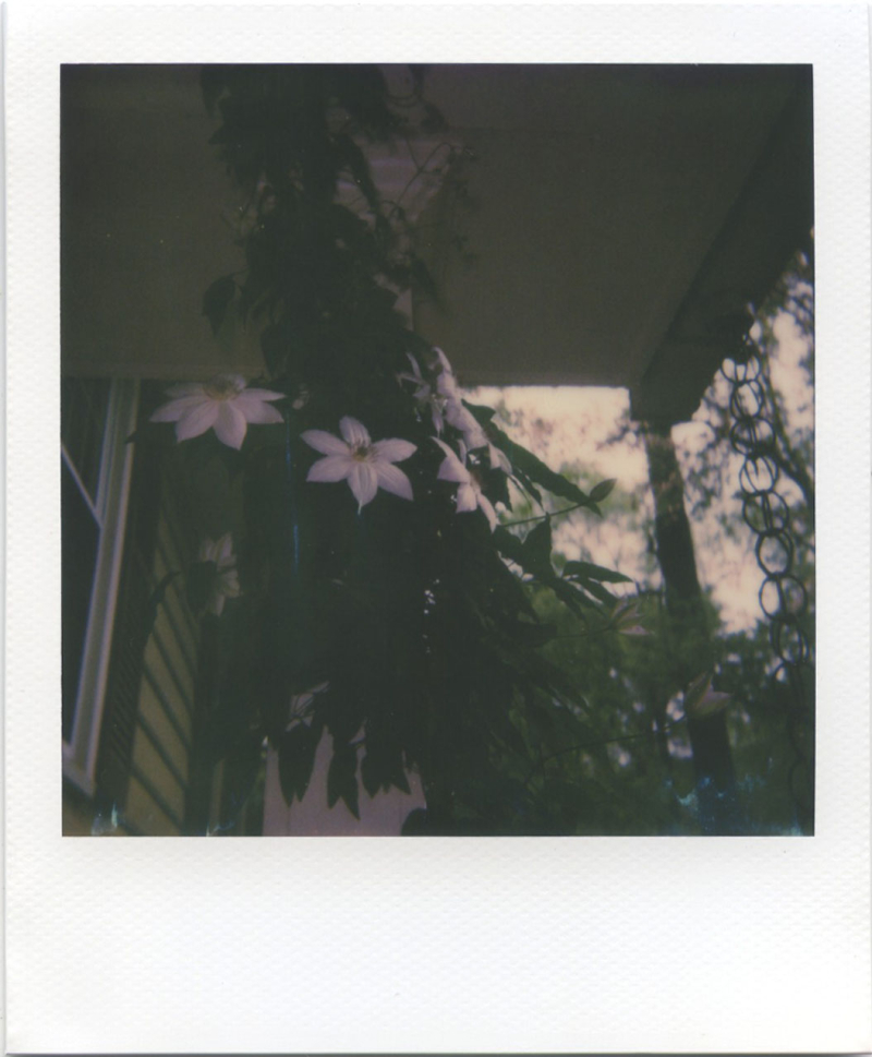Apr19_polaroid_6002