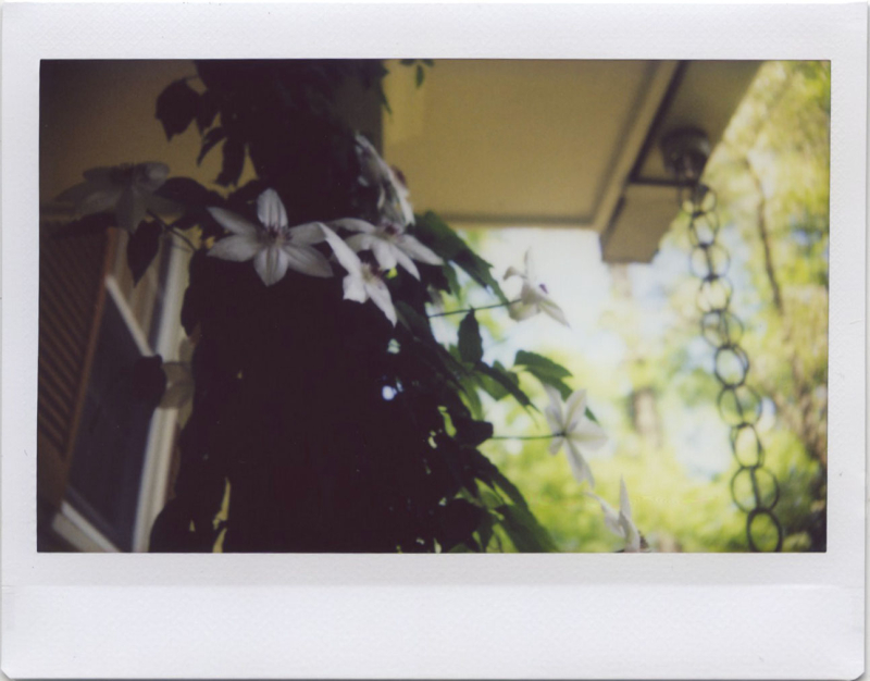 Apr19_instax_roidweek2