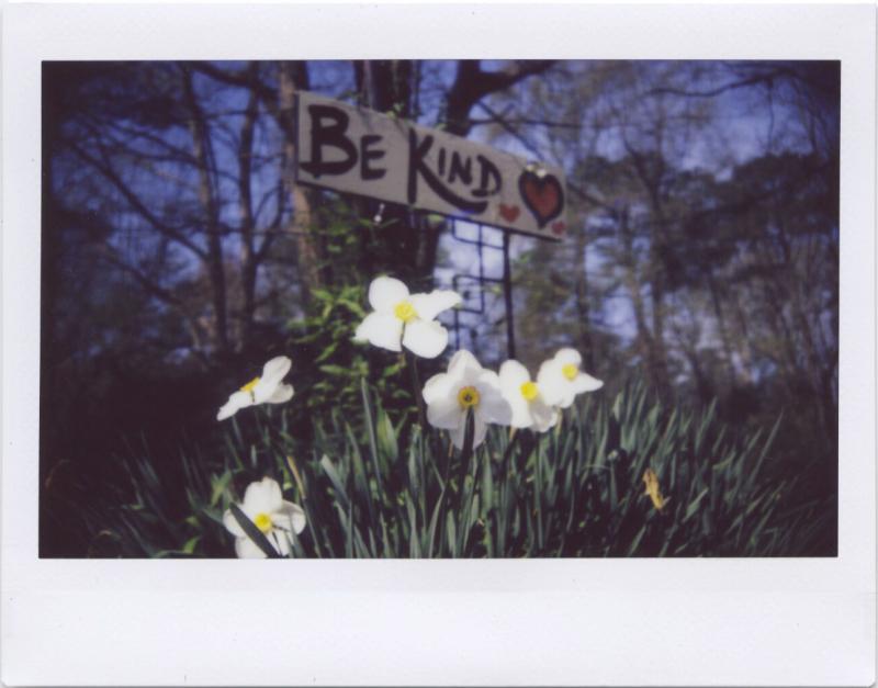 Apr19_instax_spring5