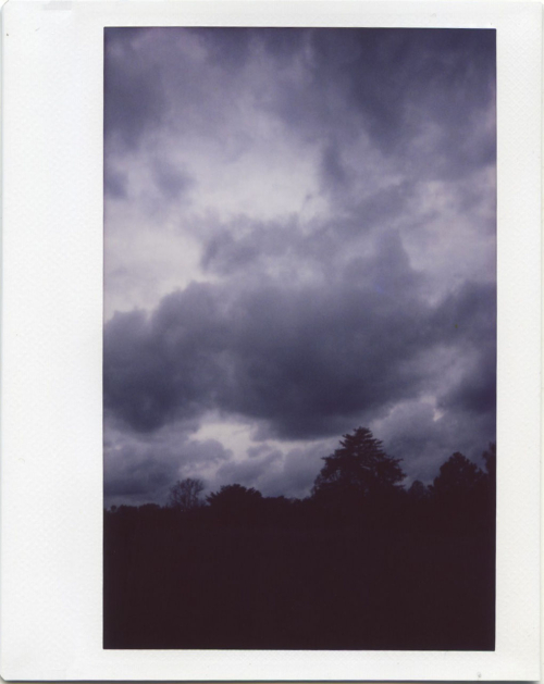 Apr19_instax_fgf3