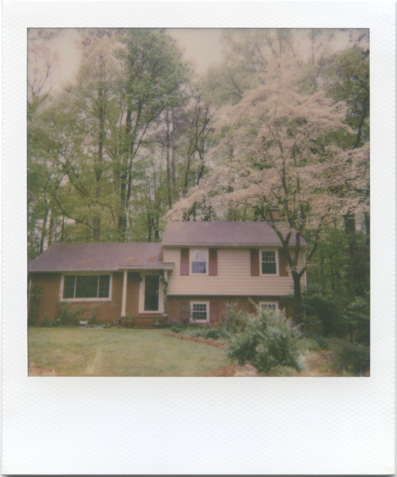 Apr19_polaroid_6001