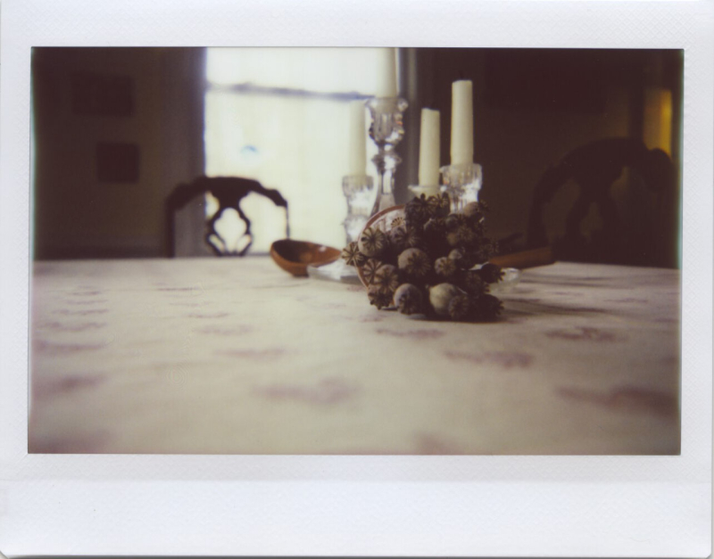 Jan20_lomo_poppy1