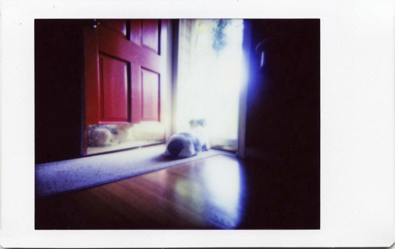 Jul19_IM_avery