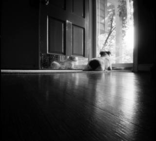 Aug19_zero_home2