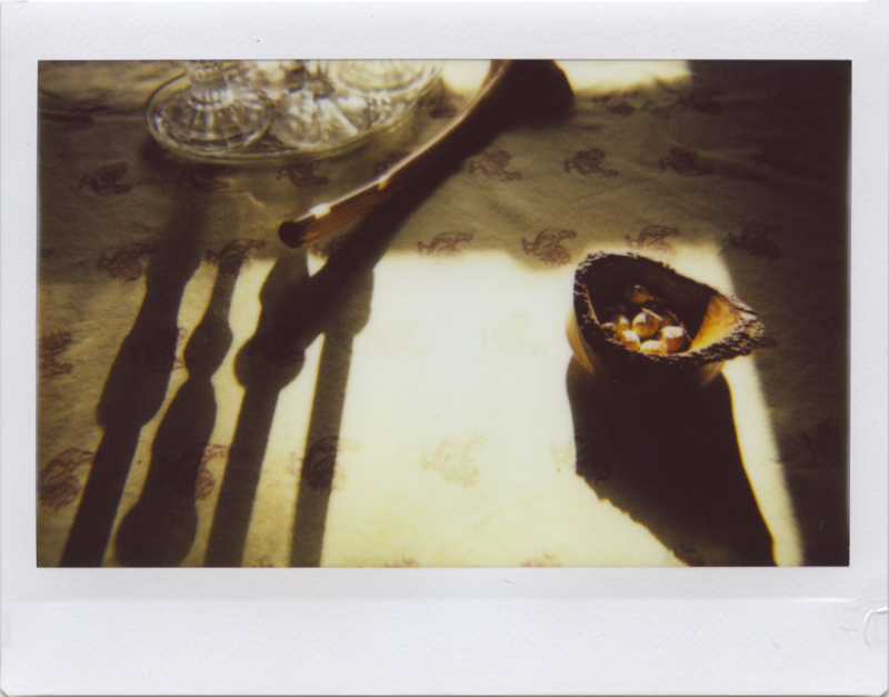Jan20_lomo_poppy2