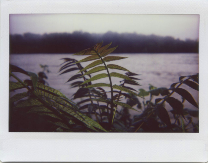 Jun20_lomo_river5