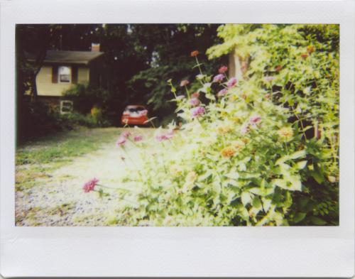 Sep20_lomo_outside