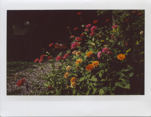 Sep20_instax_outside2